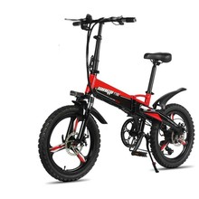 LOVELION 20 Inch 48V Lithium Battery Electric Bicycle 250w Engine Rear Wheel Hidden Aluminum Folding Bike Tyres Bold