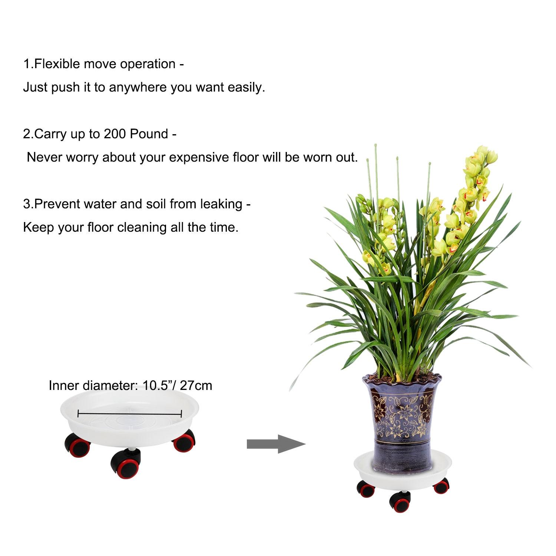 Yililay Plante Caddy Roue Planteur Pot de Fleurs Mover Support en Fer Chariot sur roulettes Robuste pour lint/érieur ext/érieur Jardin 30cm