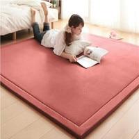 2CM Thick Coral Fleece Mat Carpet 180*200*2CM Tatami Tea Table Manually Bedroom Carpet Rectangle Living Room Rug