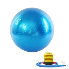 New 65cm Gym Fitness Yoga Exercise ball with Hand Pump for men and women