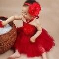 Princesa Peonía Flor Tutu Dress con Diadema Niñas Tutu Vestido de Traje de Fantasía de Halloween Props Foto Del Bebé TS043