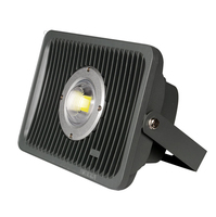 LED flood light 30W 50W 100W New Year waterproof IP65 Floodlight Spotlight Outdoor Lighting garden square light Free Shipping