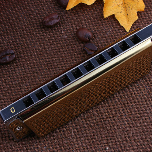 Easttop 10 Harmonica zilvergrijs Harmonica Diatonic 12 Tune BluesHarp - Muziekinstrumenten - Foto 5