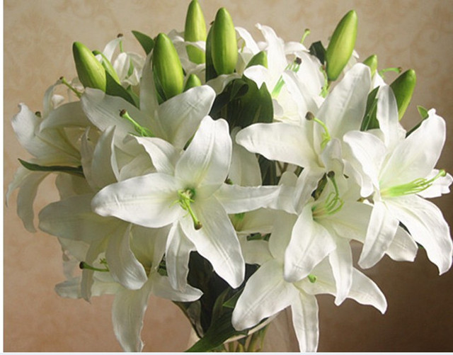 Hot Real touch Artificial Plant 6Head Gr White Lily Home ... White Lily House Plant on white lily wallpaper, lily of the valley house plant, white lily garden, flamingo lily house plant, lily flower plant, white lily seeds, white lily christmas, white lily plant care, white lily flower, water lily house plant, white and green plants, peace lily plant, white hydrangea house plant, white lily grass, calla lily plant, white lily tree, white water lily plant, green chinese evergreen plant, white lily outdoor plant, white lily tulips,