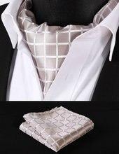 RC302E Reine Beige Überprüfen Silk Halstuch Gewebt Ascot Krawatte Einstecktuch Einstecktuch Suit Set