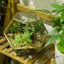 Desktop Gold Pentagon Ball Shape Open Sphere Glass Geometric Terrarium Succulent Plants Planter Brass Balcony Decor Flower Pot