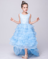 Princess Tulle Ruffle Party Wedding Pageant Lace Dresses Clothes White Lavender Light Blue Party Dresses for Tail Princess Dress