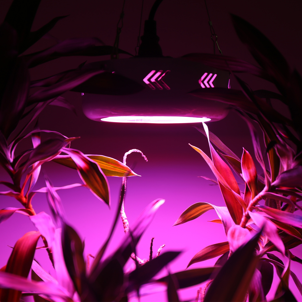 30W LED Grow Light Red+Blue+UV+IR AC85~265V Led Plant Lamps Lighting with Hanging For Hydroponics Vegetables and Flowering Plant 20w 30w 120w led plant grow panel light hydroponics lamps ac85 265v smd3528 for greenhouse flowering plant indoor grow box