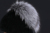 YCFUR Gorros Chapéus de Inverno da Pele Das Mulheres 2016 Genuine Malha Rex Coelho Tampas de pele Com pele De Raposa de Prata Inverno Chapéu Forrado a Pele Feminina YH201
