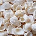 100 шт./лот натуральная оболочка «сделай сам», аквариумное украшение, белая оболочка 2-3 см, маленькая раковина, морское натуральное ремесло, б...