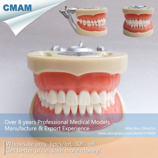 Aliexpress.com : Buy CMAM DA010 Soft Gum 32pcs Teeth Standard 200H ...