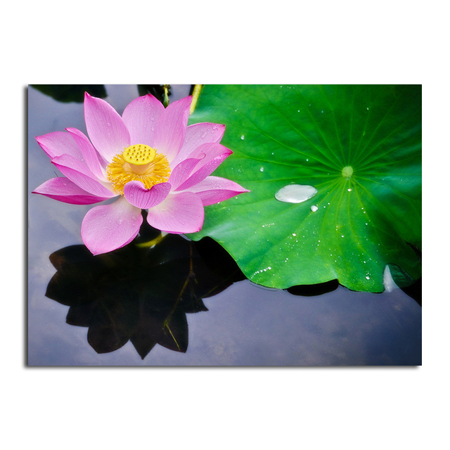 5d Diy Diamond Painting Lotus Flower Cross Stitch Diamond Embroidery