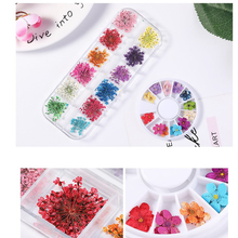 1box Dried Flowers Nail Art Decoration 3D Manicure Polish Summer Real Preserved Floral Leaf Mixed Dry Bloom Tips