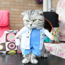 Funny Costume a Doctor for Cat