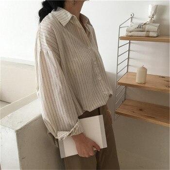 2019 Mazefeng primavera outono camisas femininas mulheres camisas listradas escritório senhora estilo mulheres camisas moda sólida mangas compridas 1