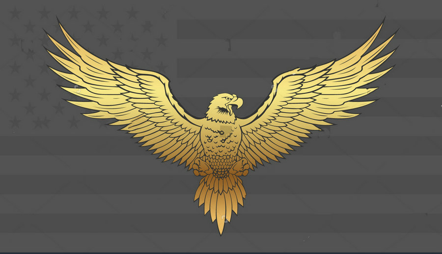 Golden Eagle With Wings Spread Photo Studio Background Vinyl Cloth