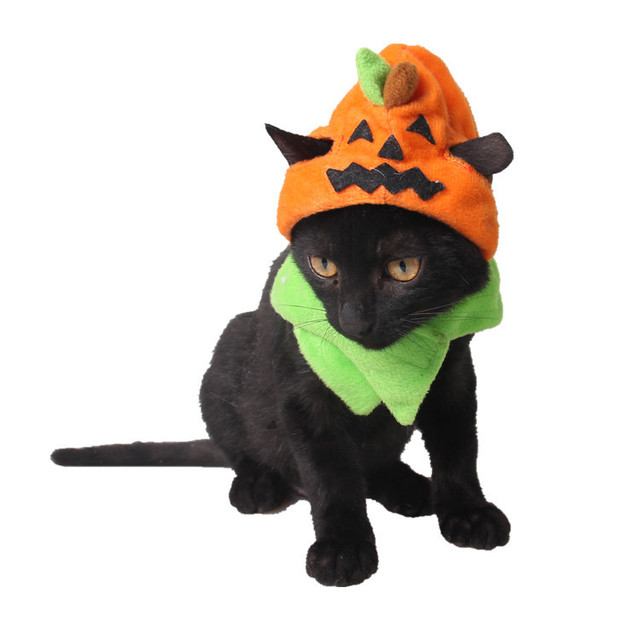 Funny pumpkin Pet small Dog Hats cape dog party dress halloween costume outfits dog scarf Cat  sc 1 st  AliExpress.com & Funny pumpkin Pet small Dog Hats cape dog party dress halloween ...