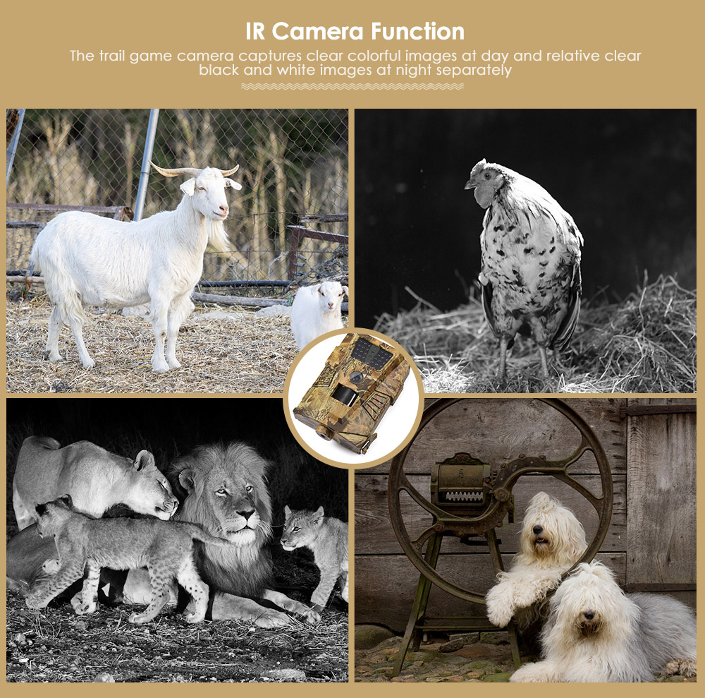 HT001B Trail Camera 30pcs Infrared LEDs scout Night Hunting Camera 120 Degree PIR 12MP Forest Waterproof Wild Camera photo traps in Hunting Cameras from Sports Entertainment