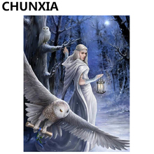 CHUNXIA Painting By Numbers DIY Framed Oil Paint Pictures Wall Art Home Decor Unique Gift 974