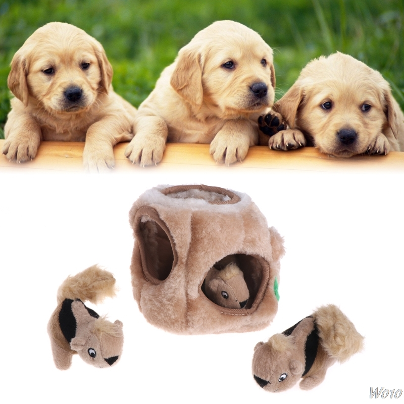 Pet Toys Squeaky Three Squirrel Hide Plush Puzzle Dogs Outward Hound Interactive