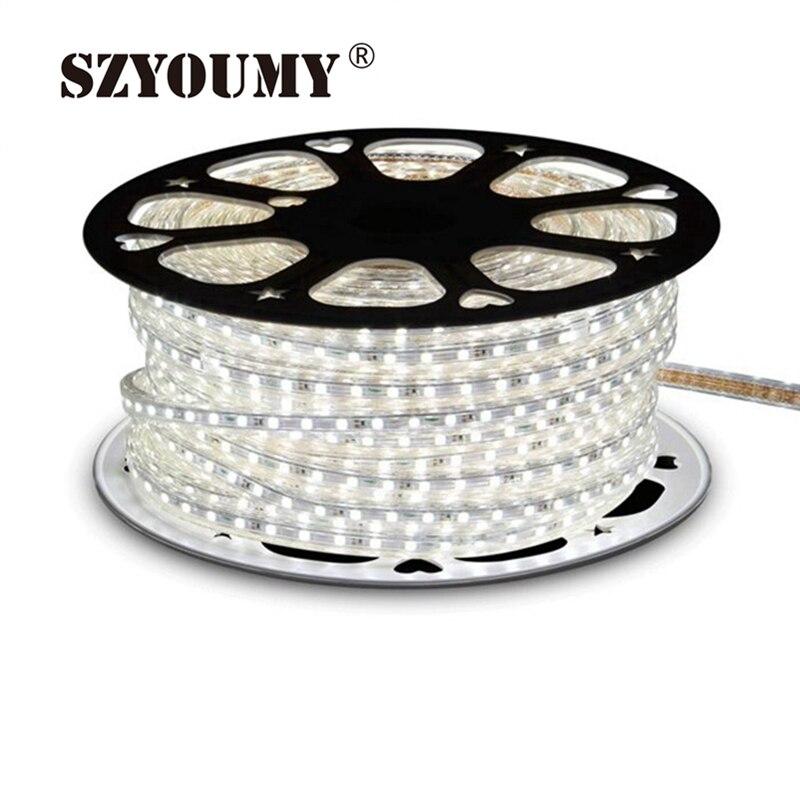SZYOUMY 220V LED bande 2835 60 LED s/M IP65 étanche Flexible LED ruban ruban extérieur 300m 200 pièces plug