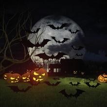 2016 New Qualified 12pcs Black 3D DIY PVC Bat Wall Sticker Decal Home Halloween Decoration Festival Sticker Decoration