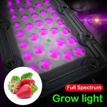 Led smd 30 Вт лампа для роста чип AC220V вход полный спектр Бисер для растений овощи фрукты растение светильник