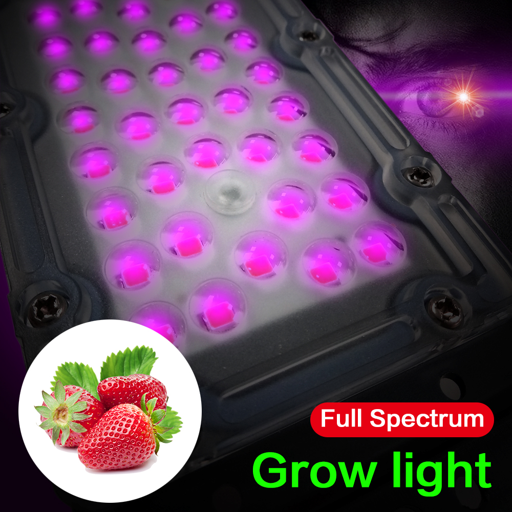 Led Smd 30W Growth Lamp Chip AC220V Input Full Spectrum Beads For Plant Vegetables Fruits Grow Light