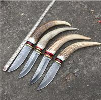 2016 Outdoor Knife Pure Manual Damascus Knife Pattern Steel Knife Gift Collection Real Horn Handle