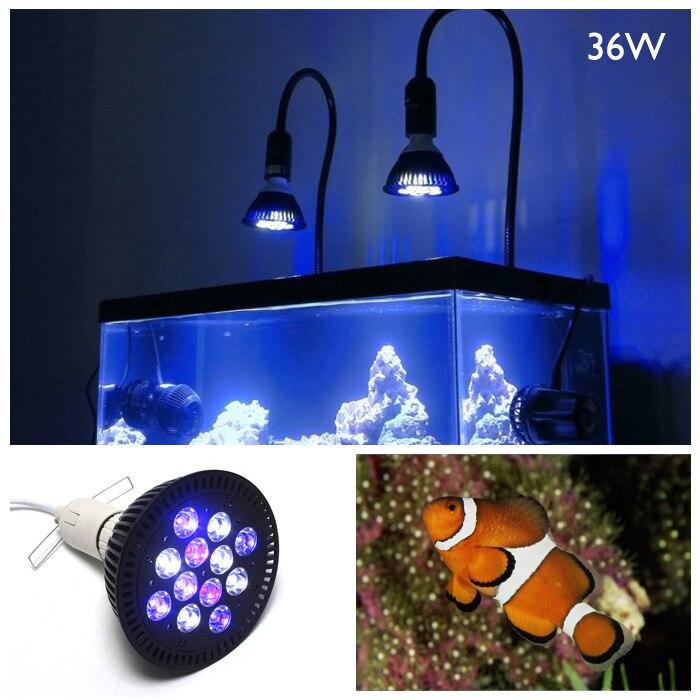 36W, PAR38 LED aquarium lights coral aquatic plants aquarium lights