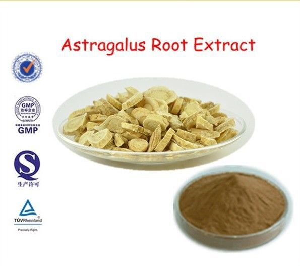 Astragalus Root Extract Powder, Polysaccharide>50%, Free Shipping