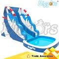 Novo Design l Corrediça de Água Inflável com Piscina Inflável Slide Piscina para Adultos e Crianças