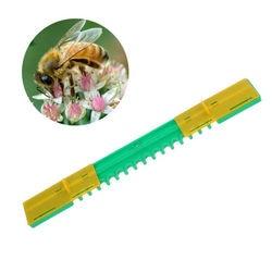 5 Pcs/Terno Abelha Anti-Fuga Porta Ninho Colméia Apicultor Abelha Anti-corredor Portão de Entrada Saída de Ventilação ferramentas de apicultura Fontes Do Jardim