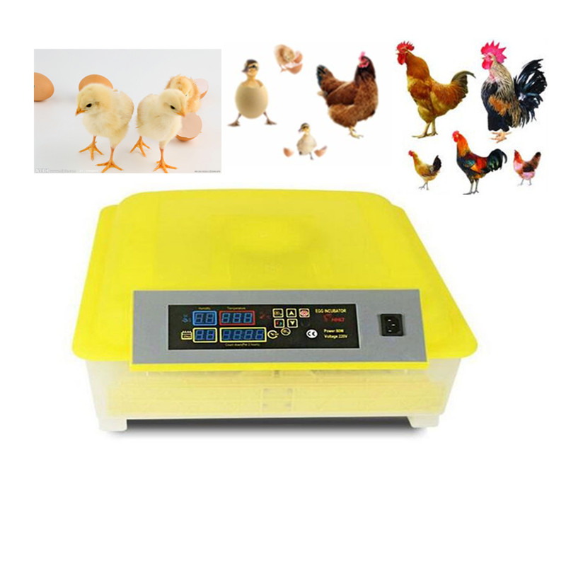 Hot Sale Mini  Fully Automatic Egg Incubator For Hatching 48 Chicken Duck Poultry Eggs hatching chicken duck egg incubator 48 eggs incubator automatic incubator poultry incubation equipment