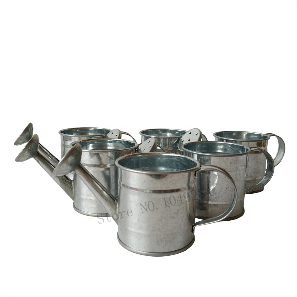 online get cheap decorative watering cans