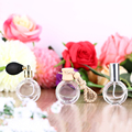 3PCS/lot 10ML Clear Women Spray Round Perfume Bottle Car Hanging Refillable Air Atomizer Atomizer Ball Empty Cosmetic Containers