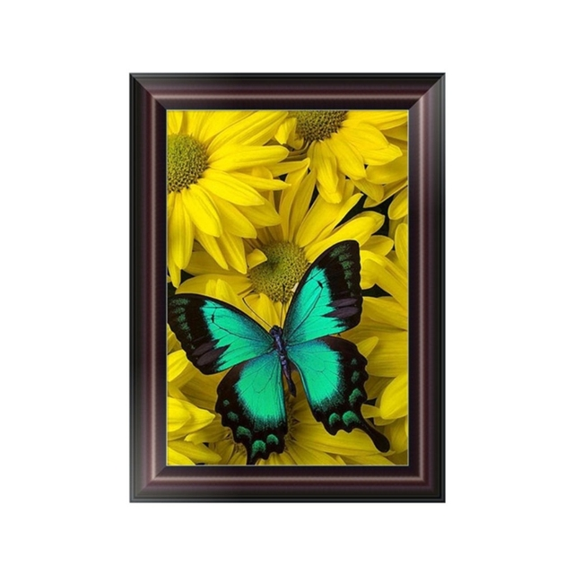 2017 New 5 Pattern DIY Butterfly 5D Diamond Embroidery Painting ...