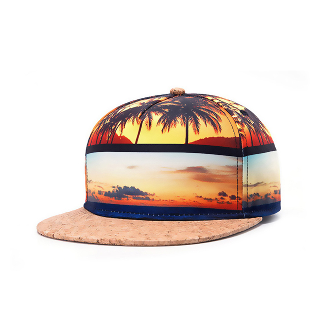 2017 Latest trendy Hawaii Summer style cap bone masculino gorras planas hip hop WK006