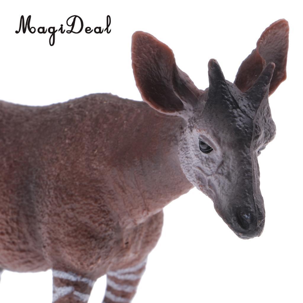 Action Réaliste De Faune à Okapis Animale Figurine Modèle Figure Cadeau