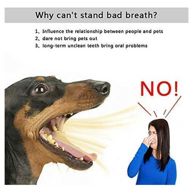 Dog Dental Care Chew Toy 4