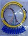 Fiber Optical Pigtail SC UPC Singlemode SM 12 cores fibers distribution bundle with 0.9mm sub-units1.5M Free Shipping