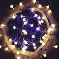 4M 20Leds Rose LED String Flower Lighting Changeable nightlight AC Plug / Battery Box Party Wedding Christmas Fairy Decor W