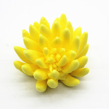 Artificial Cactus making Plaster Clay Mold 3D flower Soap Making Silicone
