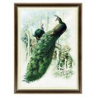 Paon animal image coton fil de soie dmc point de croix kits 100% imprimé broderie diy main à l'aiguille mur du foyer