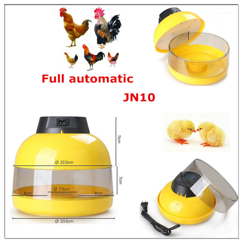 Hot sale! High hatching rate hold 10 eggs automatic mini egg incubator for home use hot sale cayler