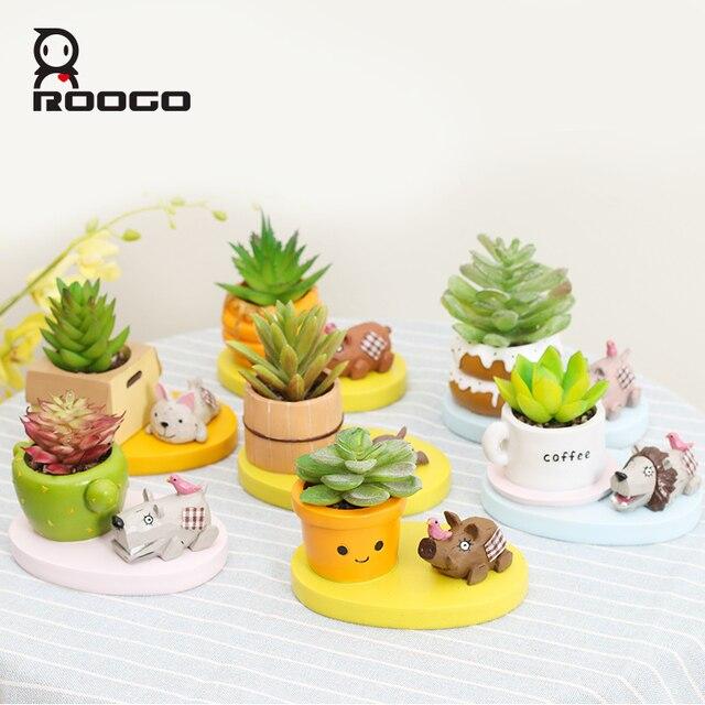 roogo mini plantes succulentes pot fleur en pot animaux. Black Bedroom Furniture Sets. Home Design Ideas