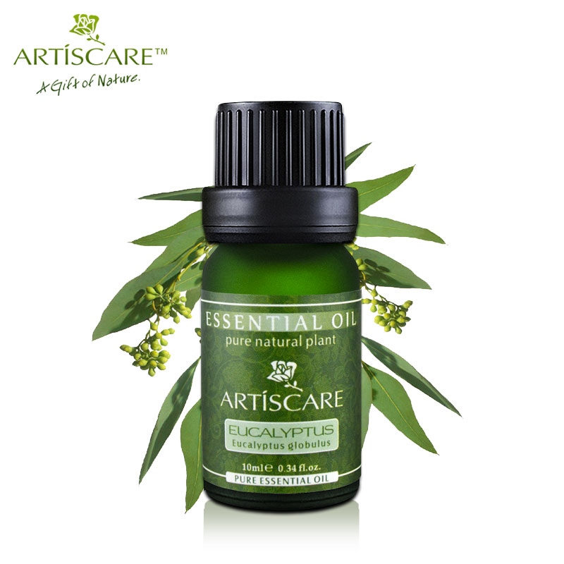 ARTISCARE 100% Pure Eucalyptus Essential Oil for Refreshing Skin and Anti-inflammatory Clean Wound Skin Care Massage Oil 10ml samiyah tasleem baqir shyum and abid raza skin wound infection treatment