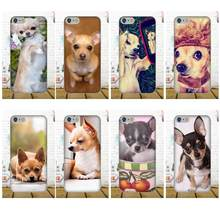 For Xiaomi Redmi 5 4A 3 3S Pro Mi4 Mi4i Mi5 Mi5S Mi Max Mix 2 Note 3 4 Plus Soft Patterns All You Need Is Chihuahua Dog Puppies(China)