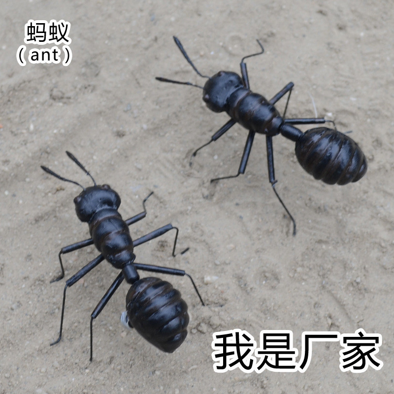 Online Buy Wholesale model ant from China model ant
