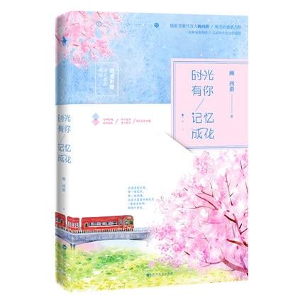 Chinese Popular Novels Wo Shi Guang You Ni Ji Yi Cheng Hua (Chinese Edition) For Adults Detective Love Fiction Book By Gu Xi Jue